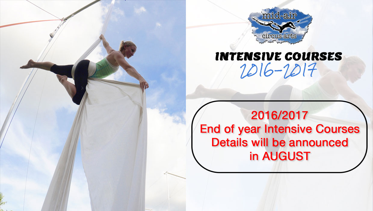 Intensive Courses in Aerial Arts and Circus Arts - Aerial Lyra Aerial Tissue Flying Trapeze